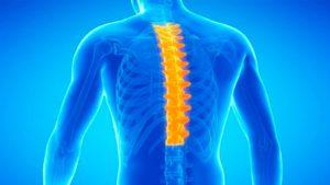 Вылечить грыжу грудного отдела позвоночника